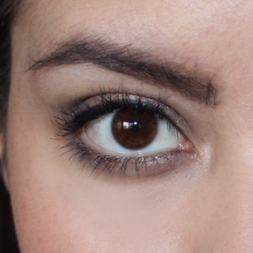 FEATHERED BROWS CLOSE UP